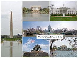 Postcard - Washington DC, USA by jpgmn