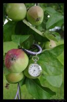 Apple Time by RBSpictures