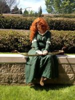 Merida - Brave by Lady-Tigress