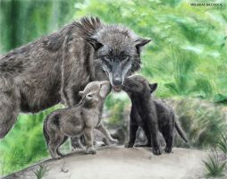 Wolves Family by MisiakasVasileios
