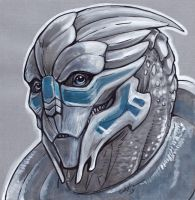 Young Garrus by caramitten