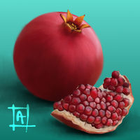 Pomegranate by Avalaa