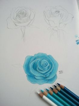 Roses by ArtificialApplepie