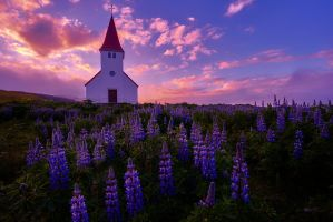Sunrise in Vik, Iceland by paulmp
