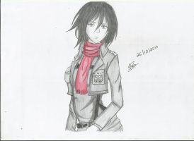 Mikasa Ackerman Sketch by StrawberriNinja