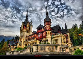 Peles castle.. by razvanx