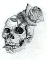 Skull and Rose by Dyslogistic