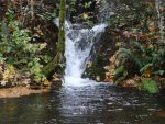 Small Waterfall by Whimseystock