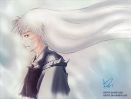 Sesshomaru by ruhi91