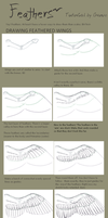 Feathers Tutorial by Gpotious