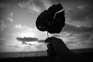 Broken. by just0a0smile