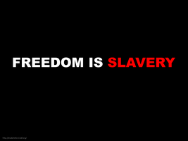 Freedom is Slavery SOS by disinformatique
