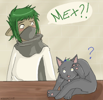 Life as a kitty by Natomi