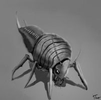 Insect concept 2 by zzteozz