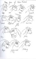 the many faces of swan river by askponyswan