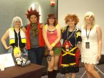 Anime Midwest 2015 Kingdom Hearts Panel :) by Wynter-Reverie
