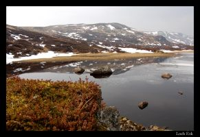Loch Esk by throwntothewolves