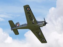 Percival Provost P56 Old Warden by davepphotographer