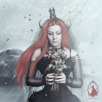 Frozen Roses by LadyProvidence