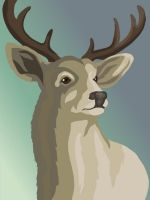 Deer Portrait Redone by MagnoliasArt