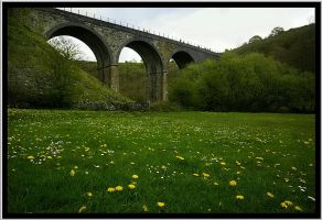 Viaduct and Dandilions by Megglles