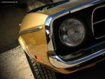 golden.stang by AmericanMuscle