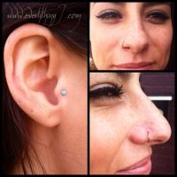 Fresh Tragus and three month old nostril by insurgent6669