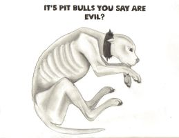You Think Pit Bulls are Evil? by Circecat1