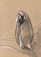sketching in the zoo: Penguin by Velouriah