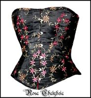 Corset No 35 by Stahlrose