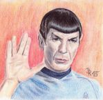 Mister Spock by LoonaLucy