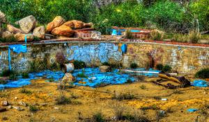 No diving or bombing by AbbottPhotoArt
