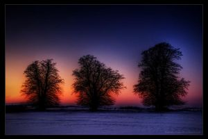 winter evening III by stg123