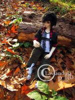 Taylor Autumn 2 by Lavandula-BJD