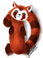 Pabu by yushuu92