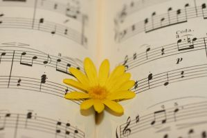 the beauty of music by Aki-Lesete
