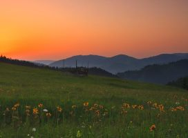 Sunrise from Bukovina. by lica20