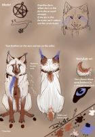 KayaWolf ref. sheet OLD by KayaWolf15