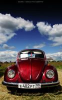 vw.bug by werf