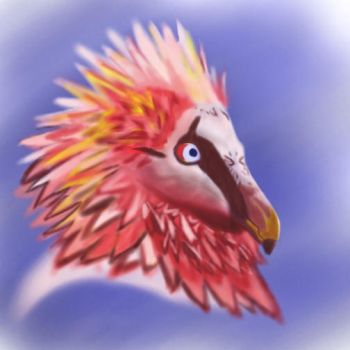 Bearded Vulture by JKRWHY