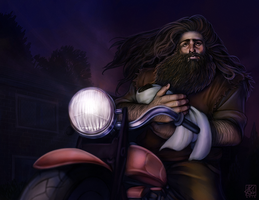 Hagrid's Bringing Him by daPatches