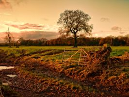 Country scene 2 by rhb4