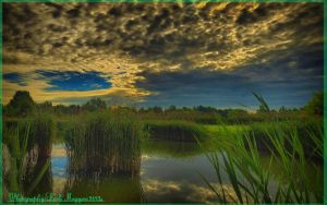 Hungarian landscapes.HDR-picture(photo series)25. by magyarilaszlo