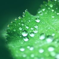 Droplets by 1Mathew7