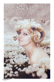 Aries by Katie-Watersell