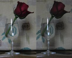 Rose Glass - 3D by ArcadianSpaceship