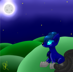 Under the night sky by shadowolf1004