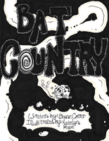 Bat Country - Cover by ZombiesAteUs