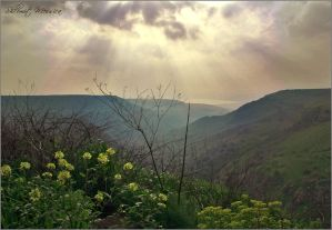 Light on the canyon by ShlomitMessica