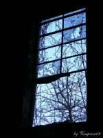 window by Vampiria69